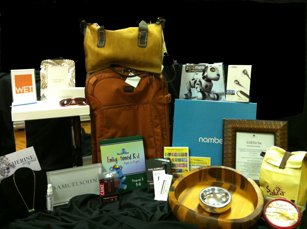Emmy_Gift_Collection_Photo-_final